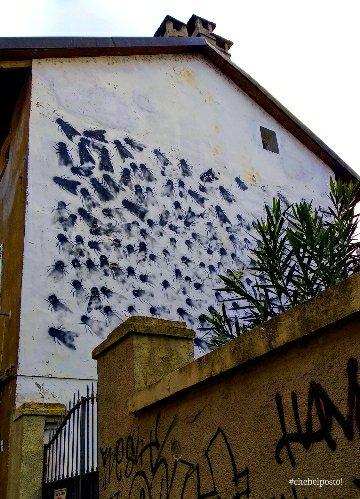 Torino, MAU - Sergio Ragalzi - mosche